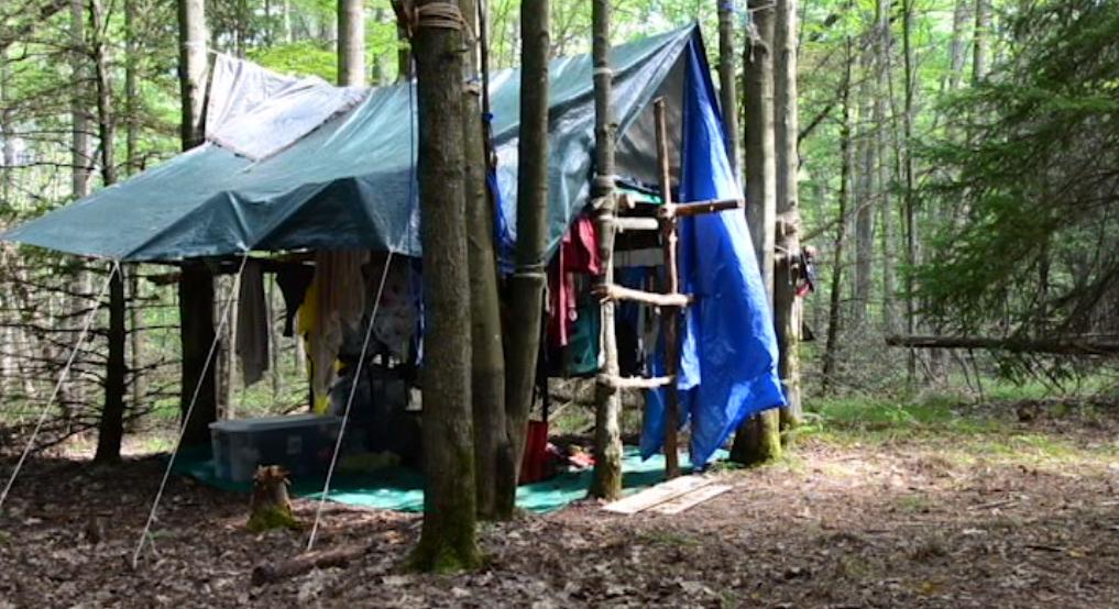 JubiTV – A Fákban lakó cserkészeink | L15, F15