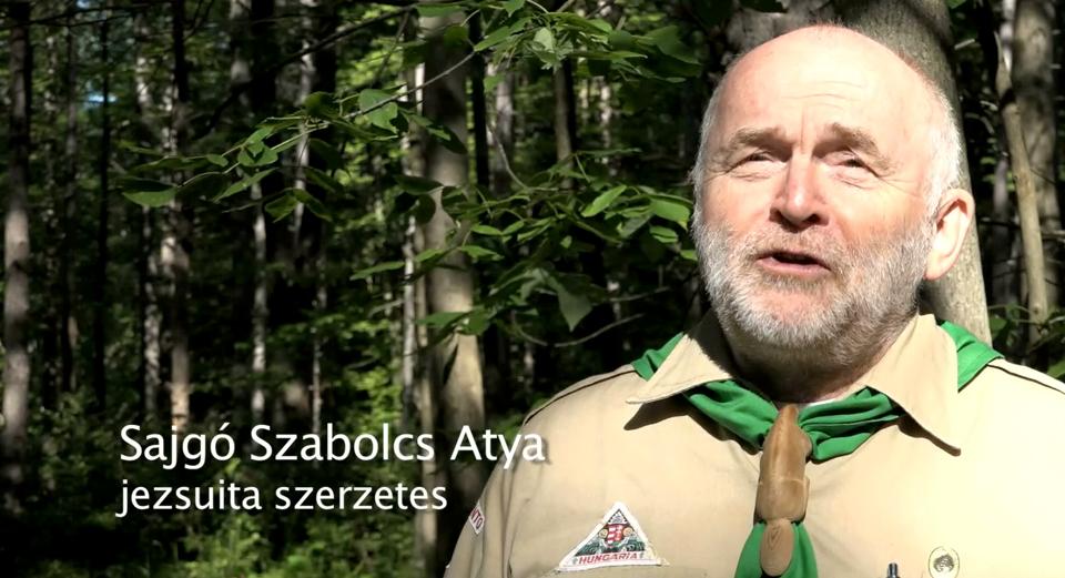 JubiTV – Fenyőkatedrális a Sik Sándor Cserkészparkban